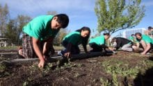Comcast Cares Day – Register to Volunteer!